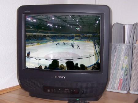 Eislöwen live im TV