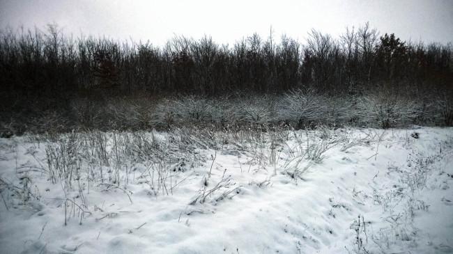 2014-12-29-Winter-13