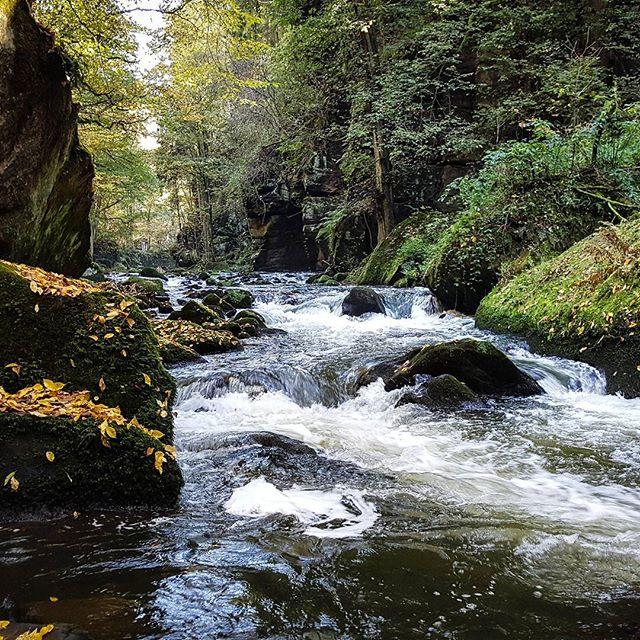 Wasser und Felsen #autumn #Herbst #bach #creek #mindestensin1000jahren