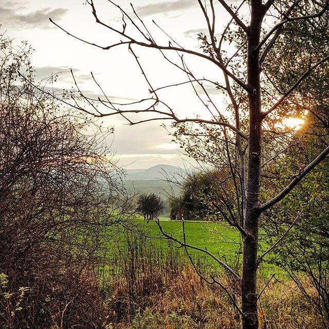 Auf dem Weg nach Hause  #sunset #autumn