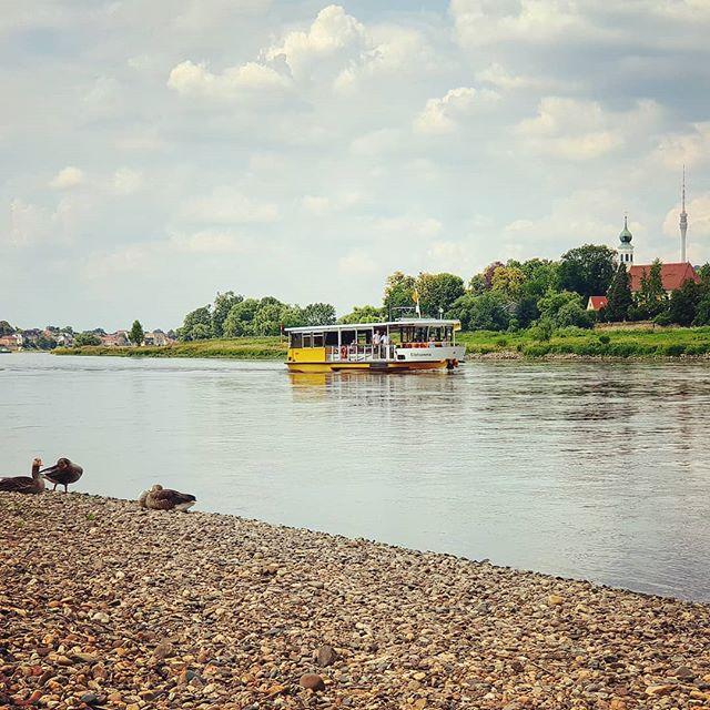 Eine kleine #Sonntagsrunde an die #Elbe #Elbflorenz #Dresden #sunday
