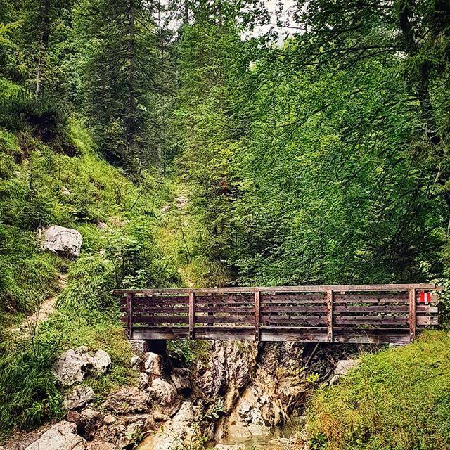 Aufstieg zur Moosenalm. Leichter Wanderweg haben Sie gesagt.... Moderate Tour haben Sie gesagt... Für Anfänger geeignet haben Sie gesagt... Glaubt keinen Wanderapps! #schönwarstrotzdem #achensee #tirol #brücke #bridge